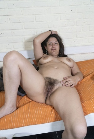 Chubby Hairy Pussy